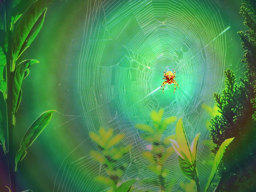 Spider Digital Art - Lightning Spider by Helmut Rottler