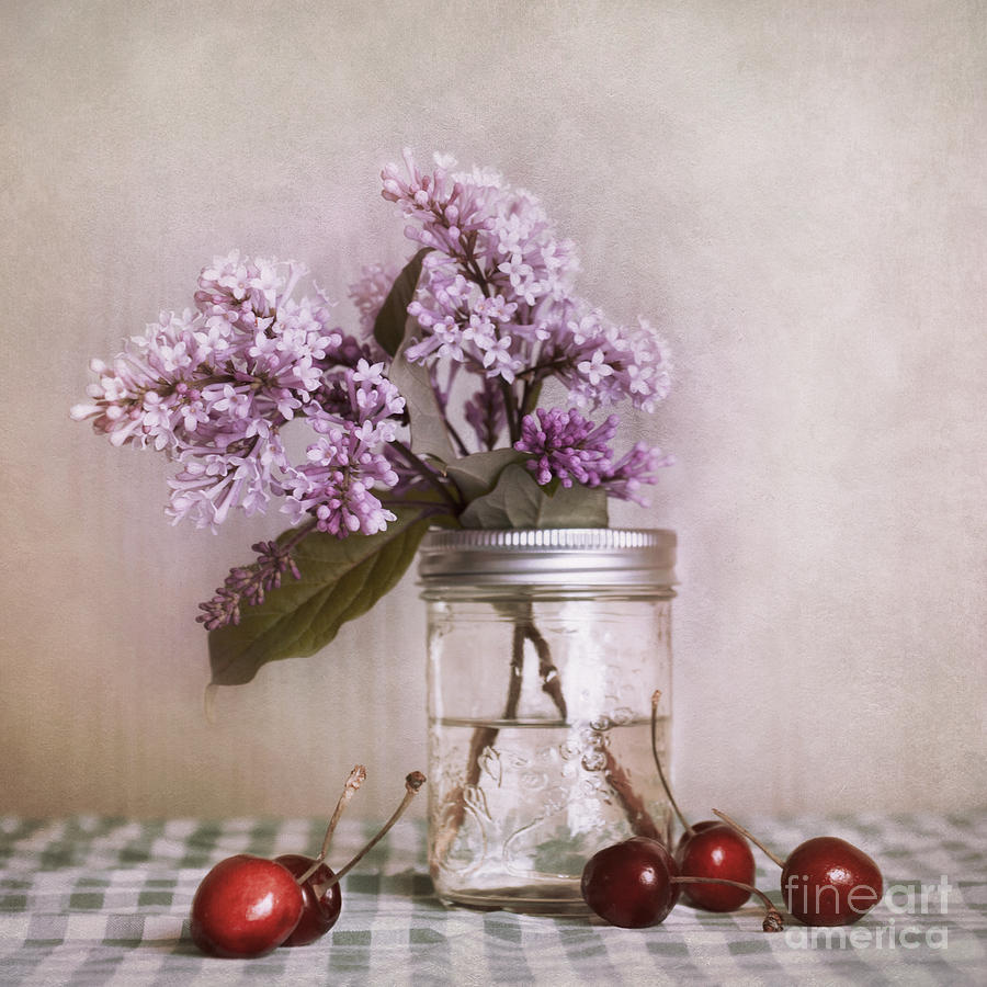Cherry Photograph - Lilac And Cherries by Priska Wettstein