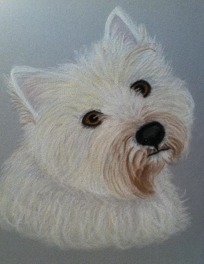 Westie Pastel - Lilly A Pastel Portrait by Hillary Rose