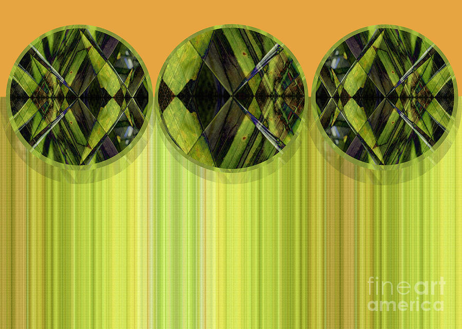Abstract Digital Art - Lime Delight by Ann Powell