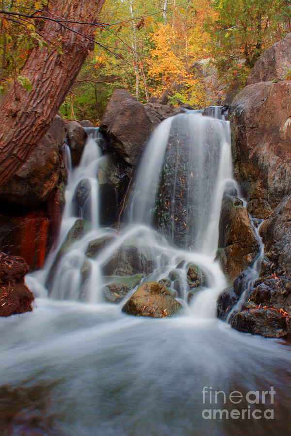 Waterfalls Photograph - Lincoln Creek by Jamie Rabold