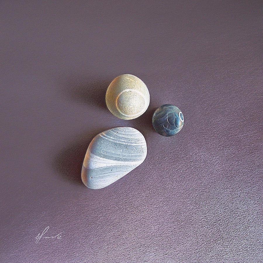 Stones Drawing - Lines And Circles by Elena Kolotusha