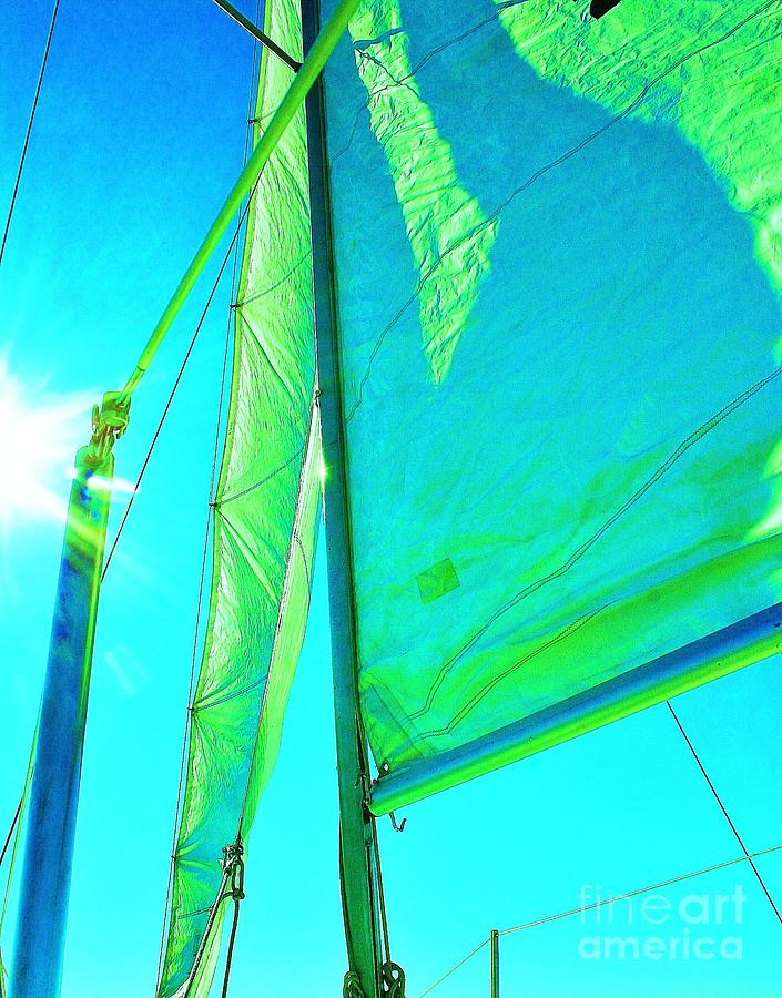 Sailboats Photograph - Lines And Sheets by Julie Lueders