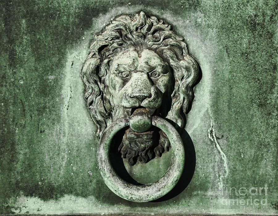 Merveilleux Lion Head Door Knocker Photograph   Lion Head Door Knocker By Paul Ward