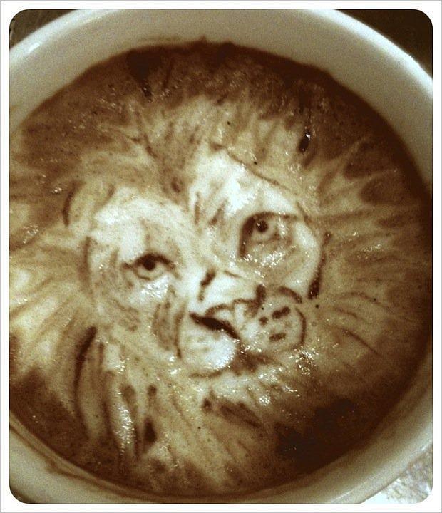 Lion Latte Art Portrait Mixed Media by Taylor Higgins