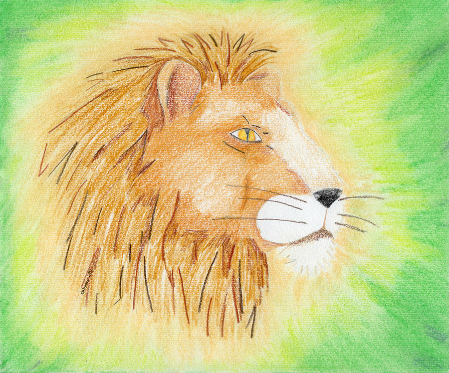 Lion Drawing - Lions Head by Mark Schutter