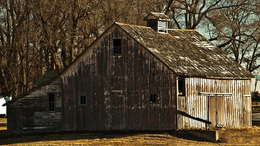 Barns Photograph - Little Activity by Edward Peterson