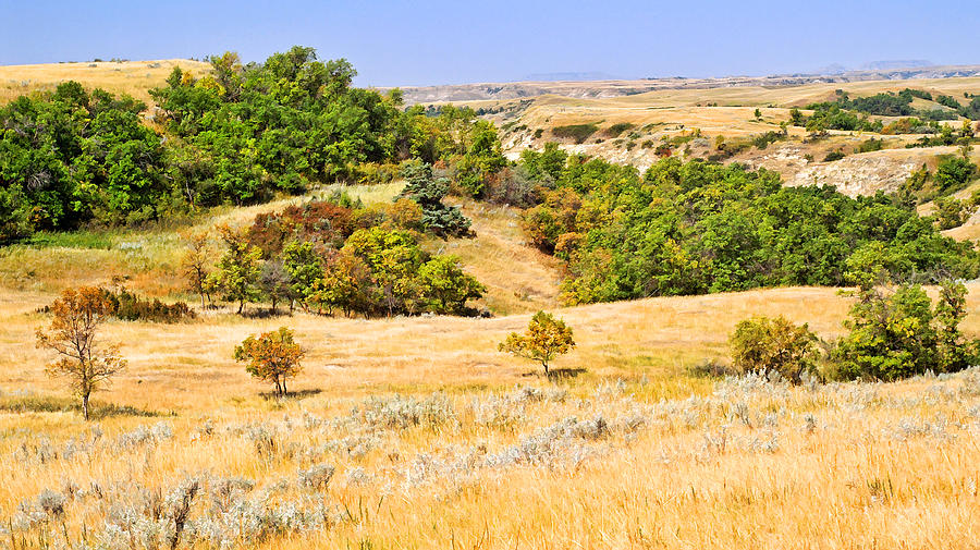 Grasslands Photograph - Little Missouri River Grasslands by Bill Morgenstern