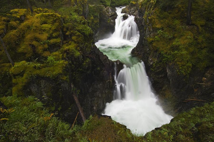 Color Images Photograph - Little Qualicum Falls Provincial Park by Mike Grandmailson