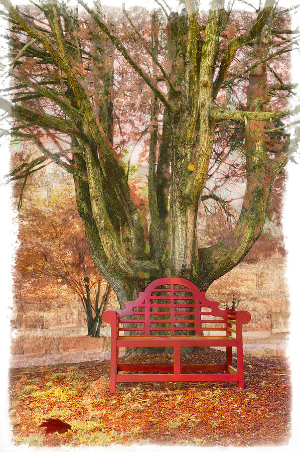 Appalachia Photograph - Little Red Bench by Debra and Dave Vanderlaan