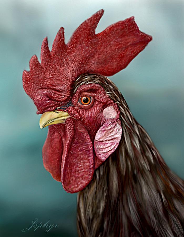 little red rooster digital art by jephyr art