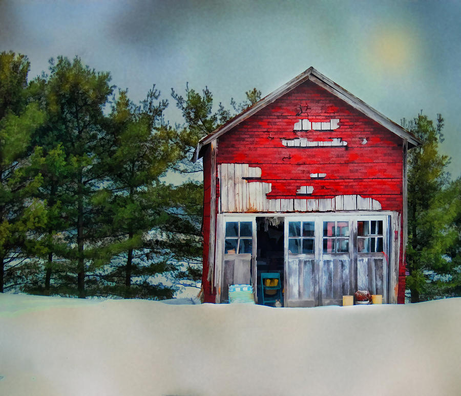 Barn Photograph - Little Red Shed by Mary Timman