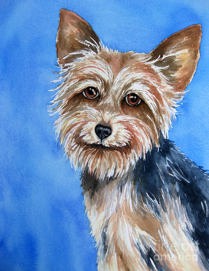 Yorkie Painting - Little Yorkie by Cherilynn Wood