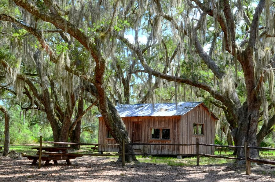 Live Oaks Digital Art - Live Oak Cabin by Bob Jackson