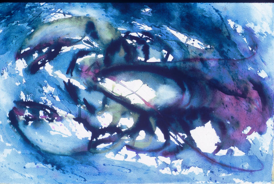 Lobster Painting - Lobster by Edi Holley