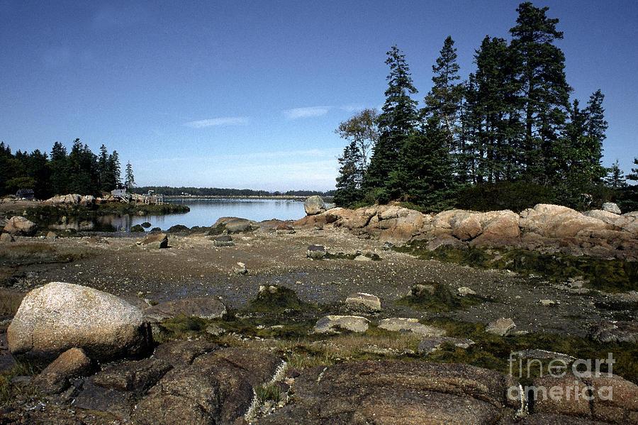 Maine Photograph - Lobster Wharf Deer Isle by Thomas R Fletcher