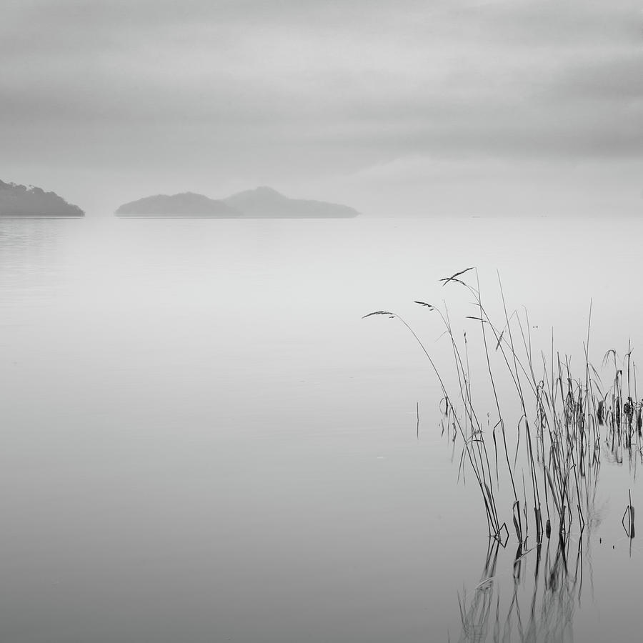 Square Photograph - Loch Lomond Grass by Billy Currie Photography