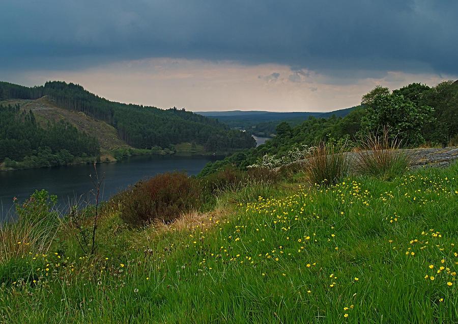 Loch Photograph - Loch Trool by Steve Watson