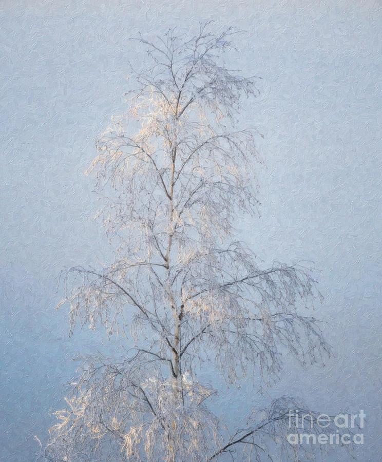 Slender Digital Art - Lone And Slender by Ari Salmela