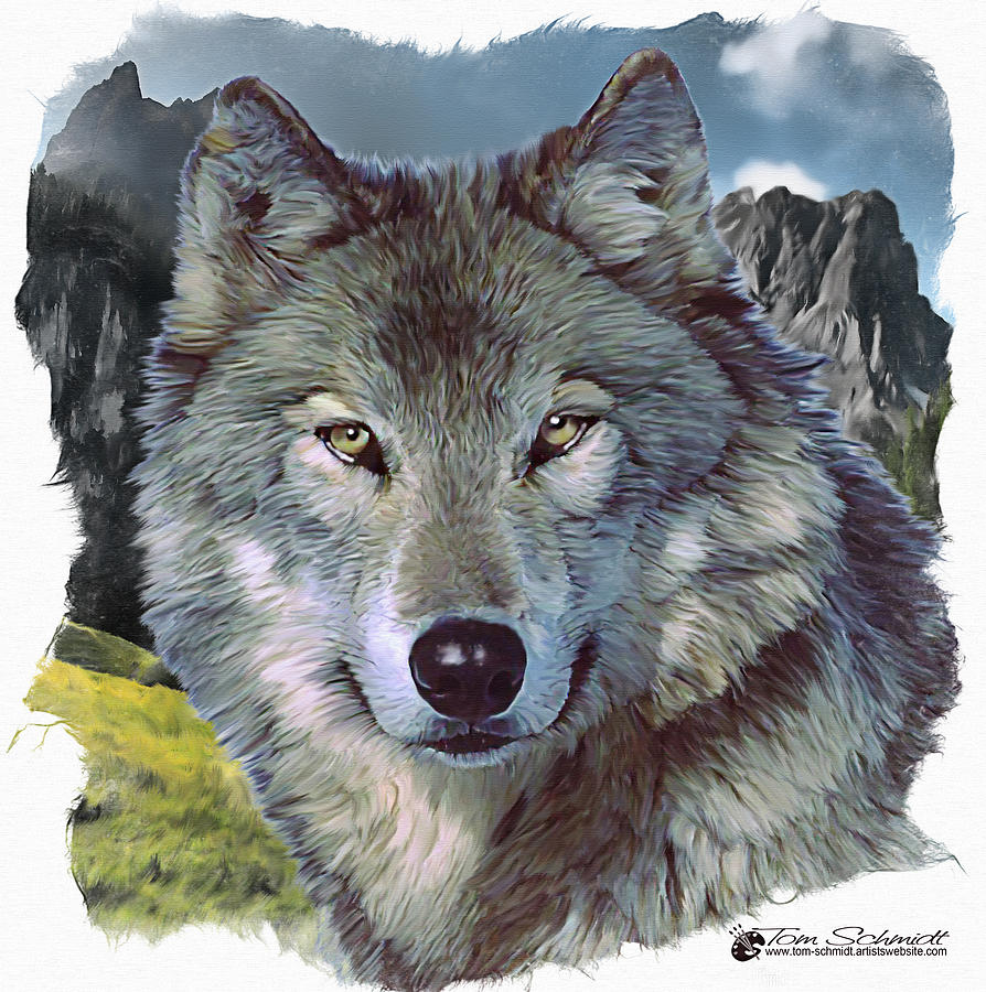 lone wolf chatrooms Zer0lonewolf: if your new, check welcome to lonewolf find out how we workfor rules and information plz- requi.