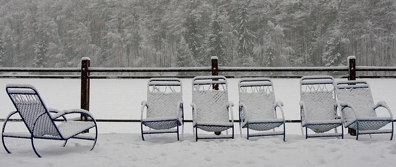Snow Photograph - Lonely Conversation by Draia Coralia