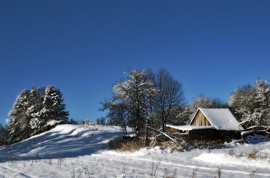 Village Photograph - Lonely Rural Log Hut Brought By Snow by Aleksandr Volkov
