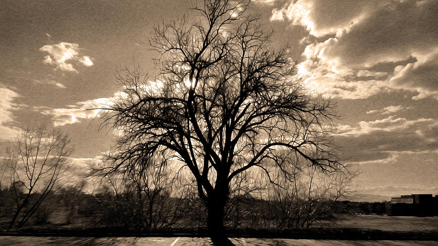 Sunset Digital Art - Lonely Tree At Sunset by Sergio Aguayo
