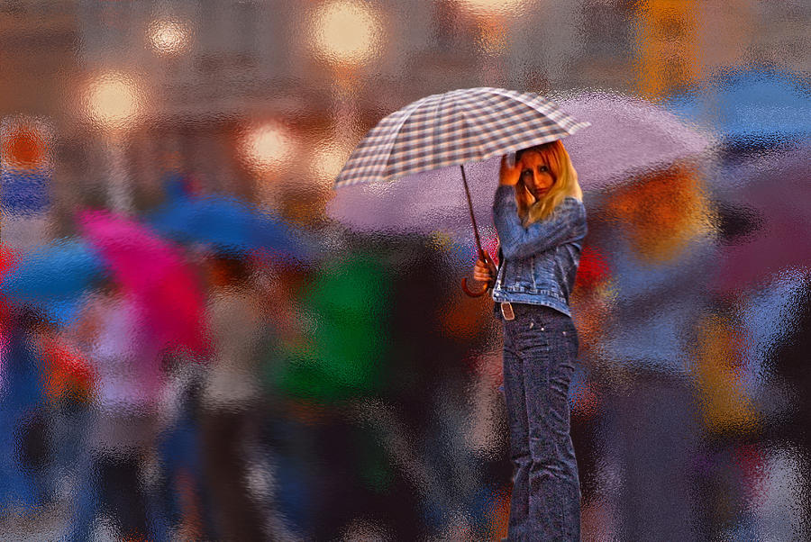 Alone Photograph - Lonelyredhead In The Rain by Don Wolf