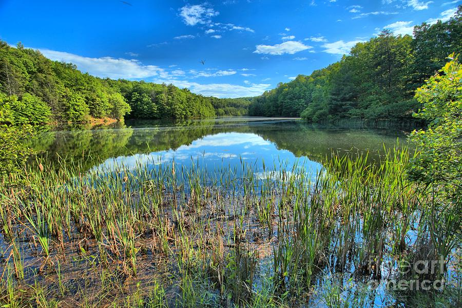Pipestem West Virginia Photograph - Long Branch Marsh by Adam Jewell