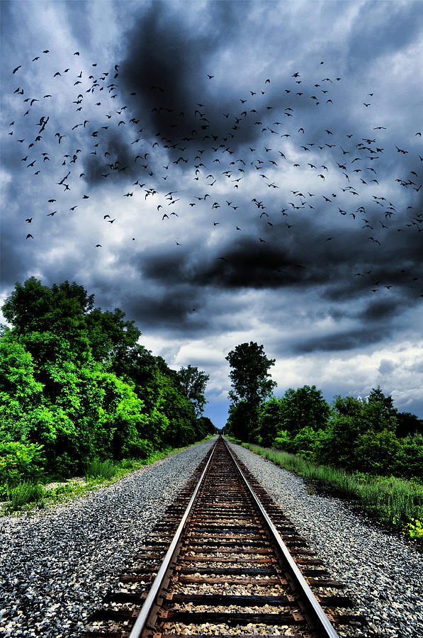 Railroad Track Photograph - Long Track Home by Emily Stauring