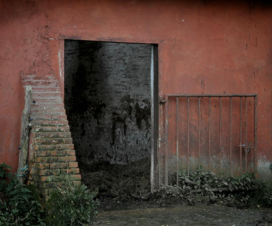 Barn Photograph - Look Inside by Odd Jeppesen