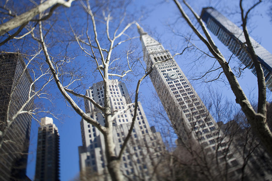 Outdoors Photograph - Looking Up Through Trees At Skyscrapers by Axiom Photographic