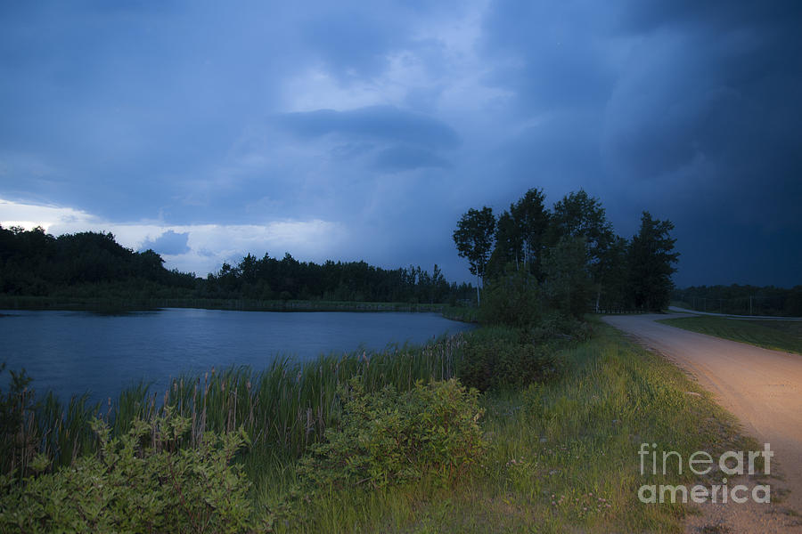 Animal Photograph - Looming Alberta Storm by Darcy Michaelchuk