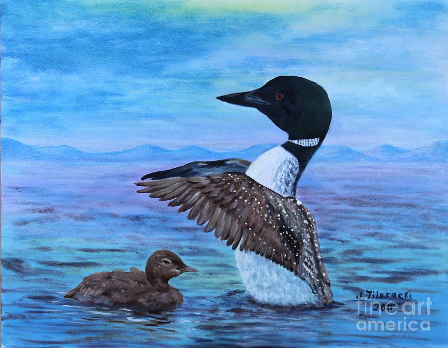 Loon Painting - Loon Mother And Baby by Judy Filarecki