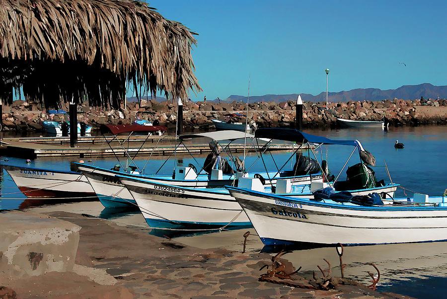Baja California Photograph - Loreto Marina Siesta Time by Scott Massey
