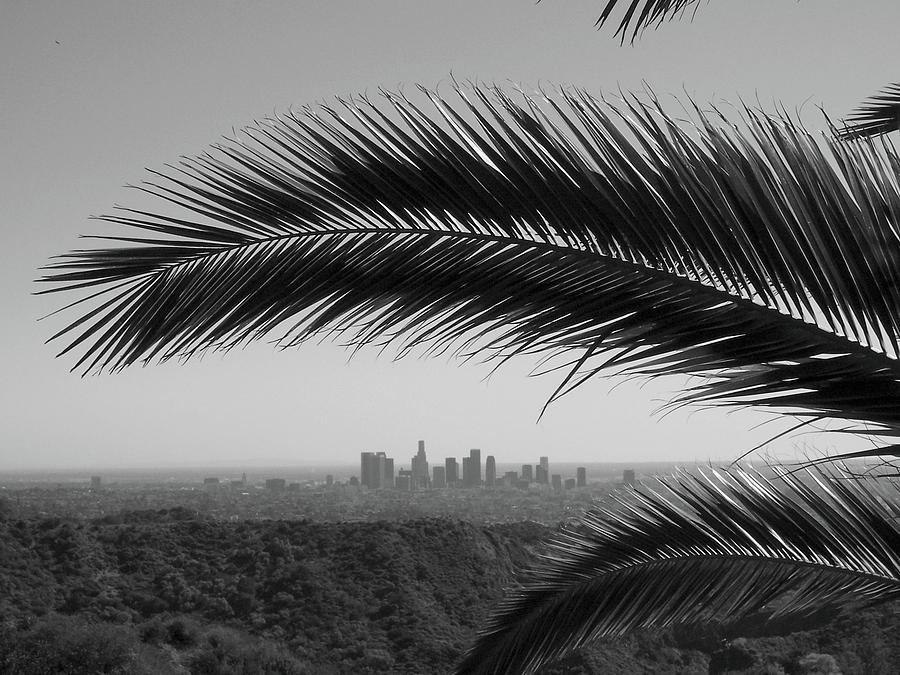 Horizontal Photograph - Los Angeles Skyline From Hollywood Hills by Mike Shaffer