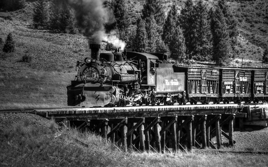 Los Pinos Bridge And Cattle Train Black And White