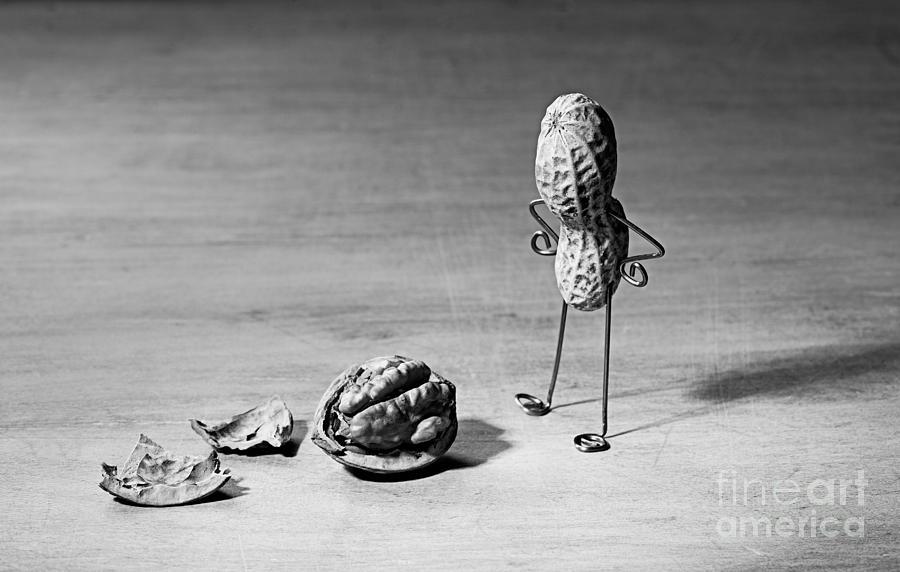 Peanut Photograph - Lost Brains 02 by Nailia Schwarz