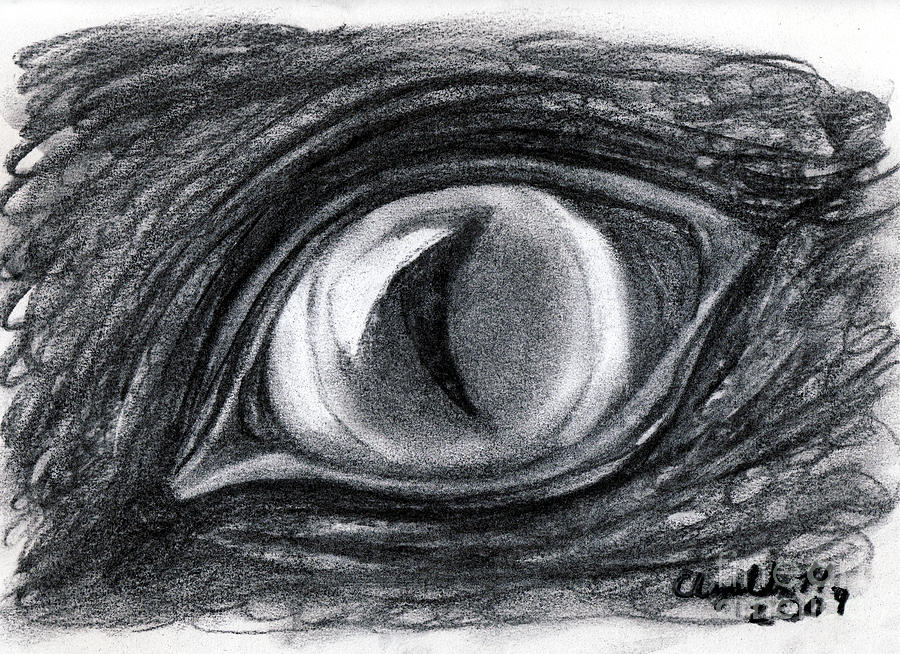 Charcoal Drawing - Lost In The Eye Of Your Past by Elizabeth Harshman