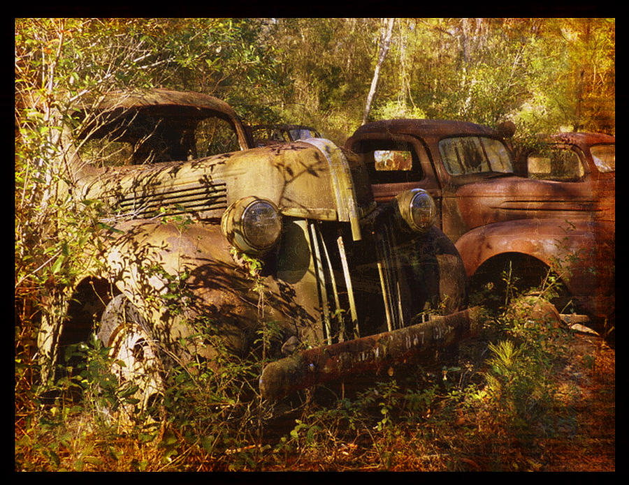 Truck Photograph - Lost In Time by Carla Parris