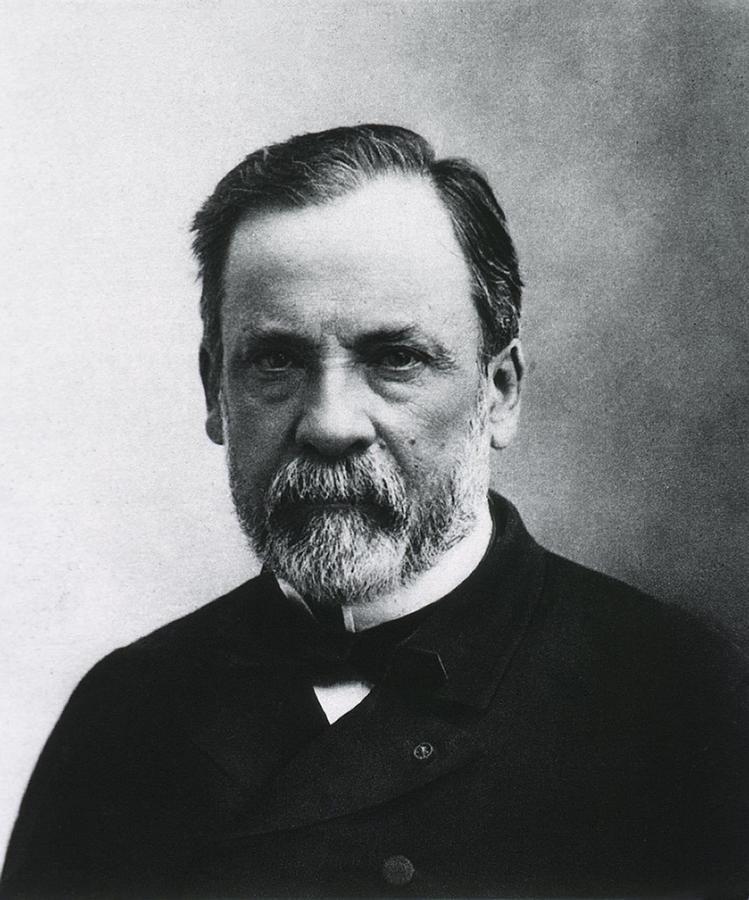 Louis Pasteur 1822 1895 French Chemist Photograph By Everett