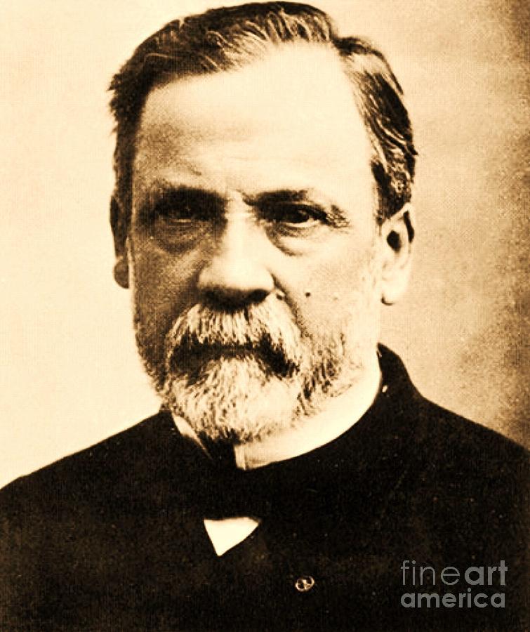 Pd Photograph - Louis Pasteur by Pg Reproductions