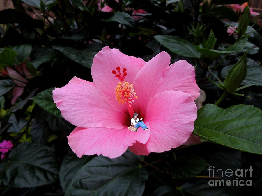 Hibiscus Digital Art - Lounging In A Hibiscus by Renee Trenholm