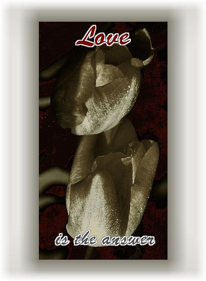 Love Photograph - Love by Lynne and Don Wright