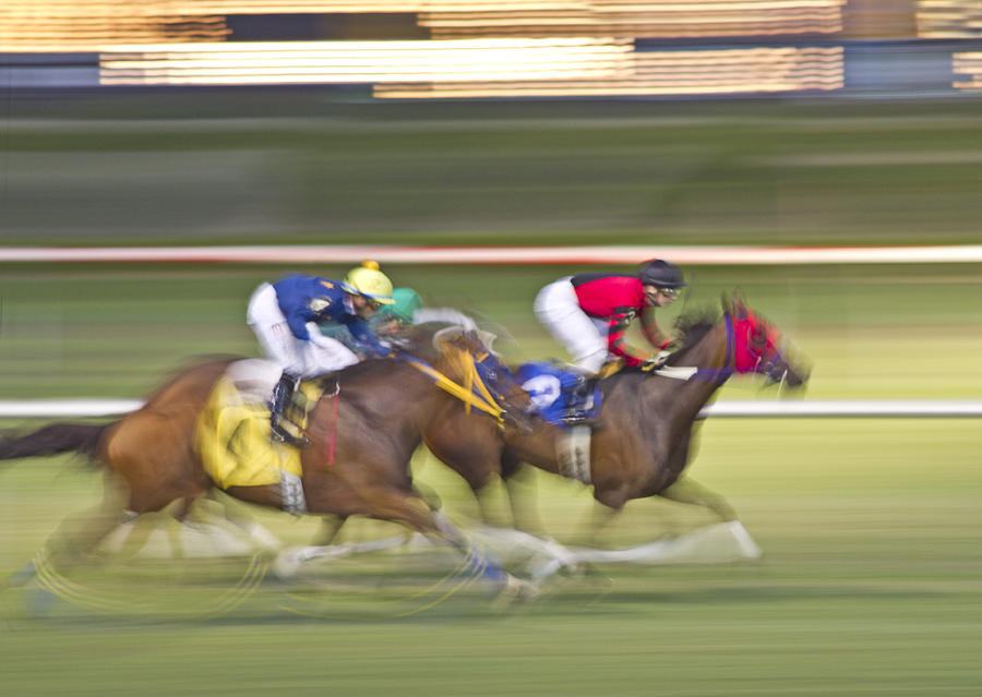 Horse Photograph - Love Of The Sport by Betsy Knapp