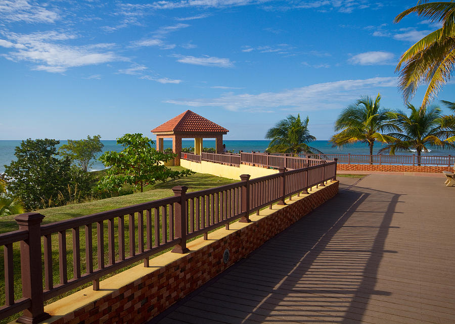 Rincon Puerto Rico Photograph - Lovely Lookout by Tim Fitzwater