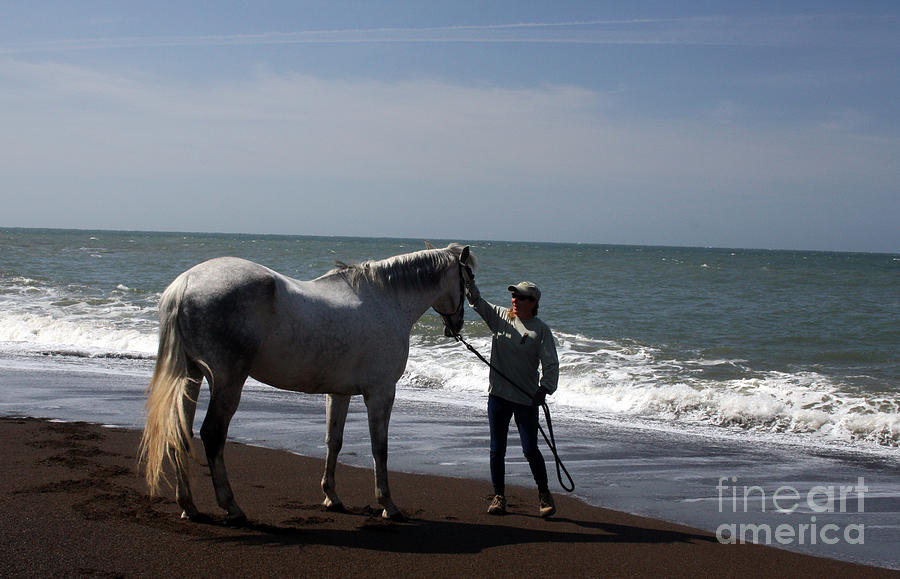 Horse Photograph - Loves Touch by Juan Romagosa