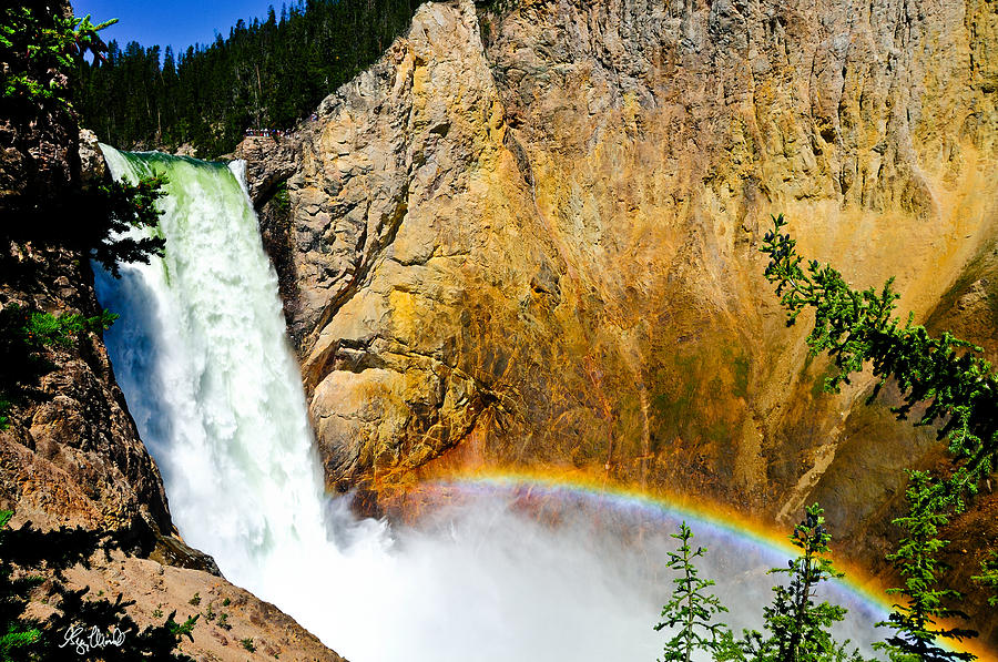 Yellowstone National Park Photograph - Lower Falls Rainbow Le by Greg Norrell