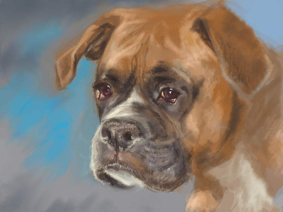 Dog Digital Art - Lucky  by Anastasia Michaels