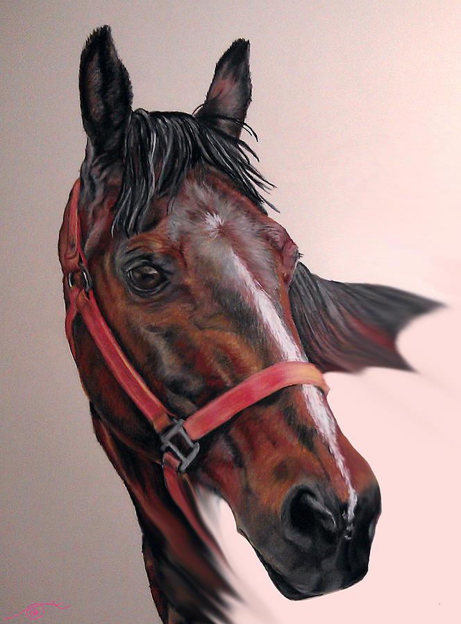 Quarter Horse Pastel - Lynettes Quarter Horse by Ann Marie Chaffin